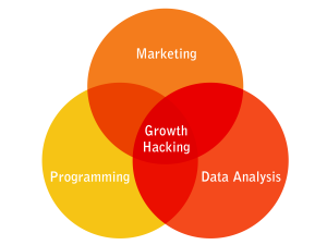 Growth-Hacking-Digital-Market